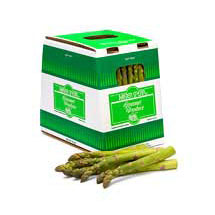 15 lbs Jumbo Green Asparagus Spears